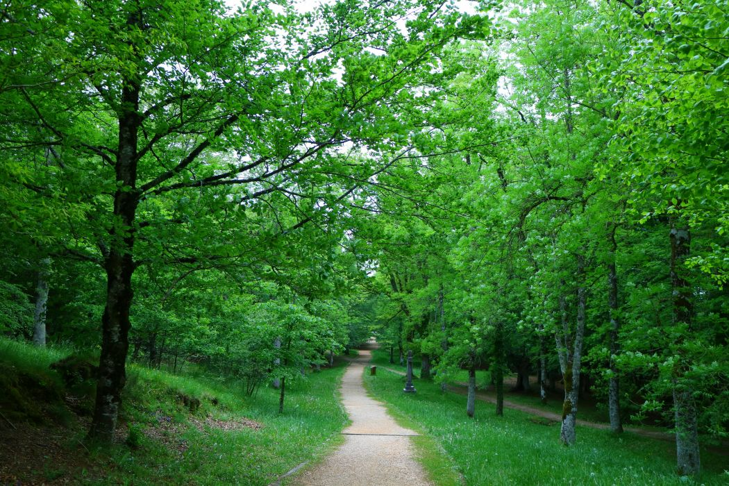 Spain Parks Trail Trees Urkiola Basque Country Nature wallpaper
