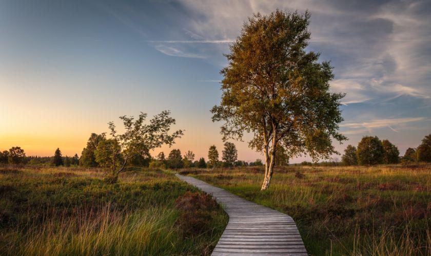 Belgium Sky Evening Grasslands Trees Wallonia Nature wallpaper