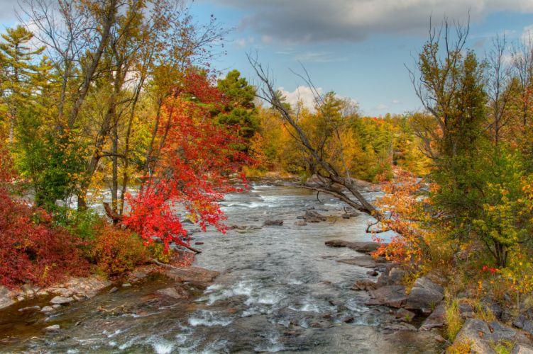Rivers Autumn Nature wallpaper