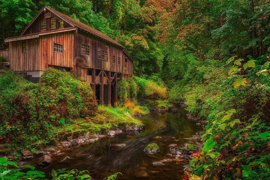 USA Autumn Mill Washington Cedar Creek Grist Mill Woodland Nature h wallpaper