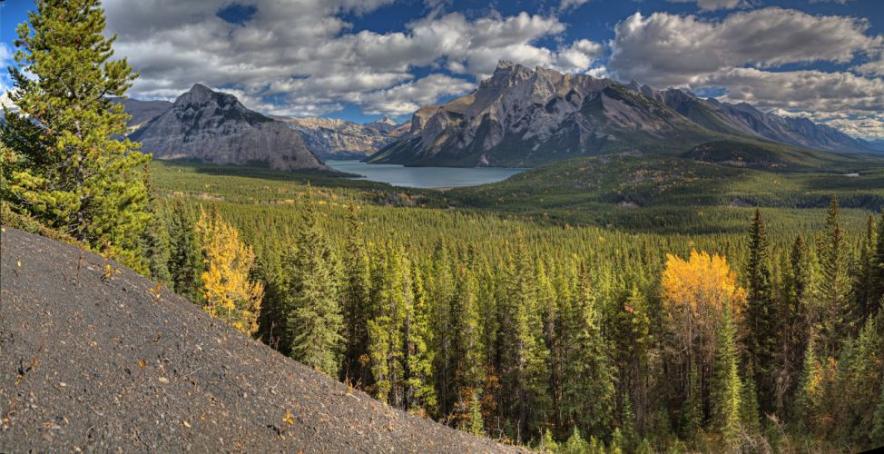 Mountains Canada Scenery Forests Banff Alberta Nature wallpaper