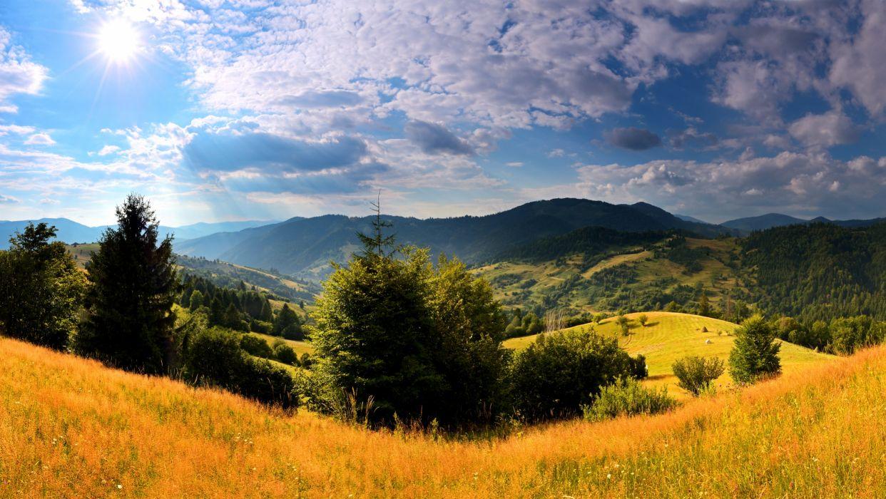 Ukraine Scenery Mountains Carpathians Fir Grass Clouds Nature wallpaper