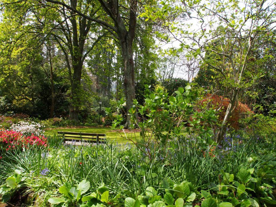 Australia Parks Trees Alfred Nicholas Memorial Gardens