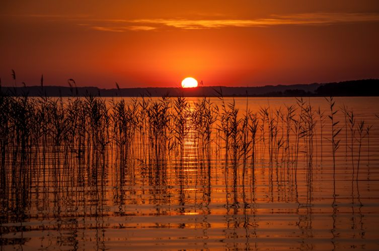 Sunrises and sunsets Sun Nature wallpaper