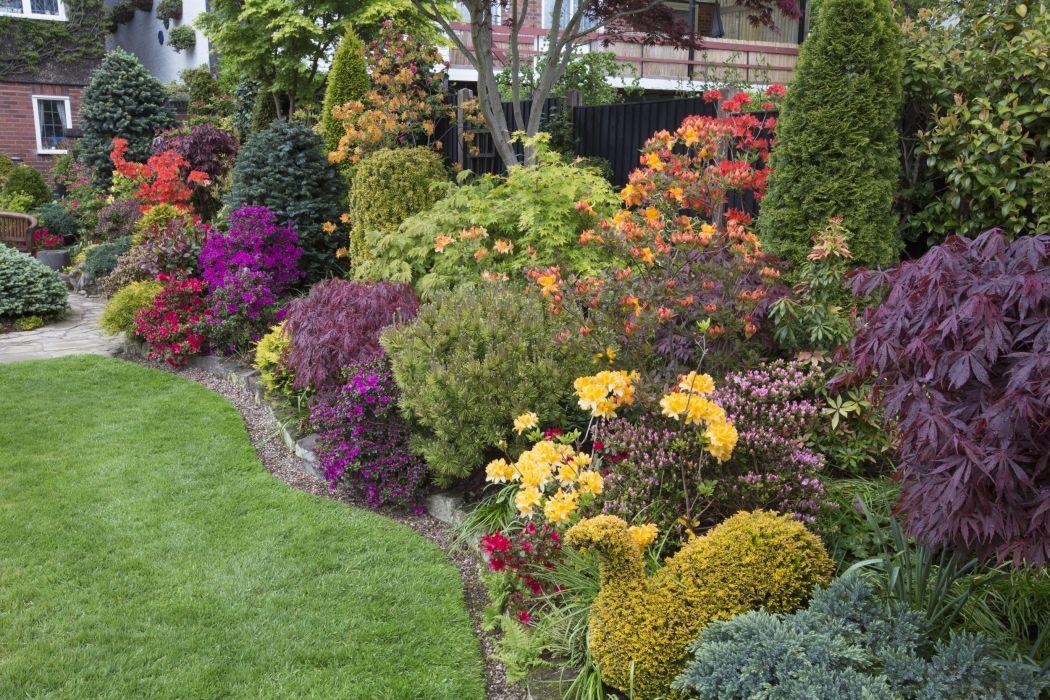 England Gardens Shrubs Walsall Garden Nature wallpaper