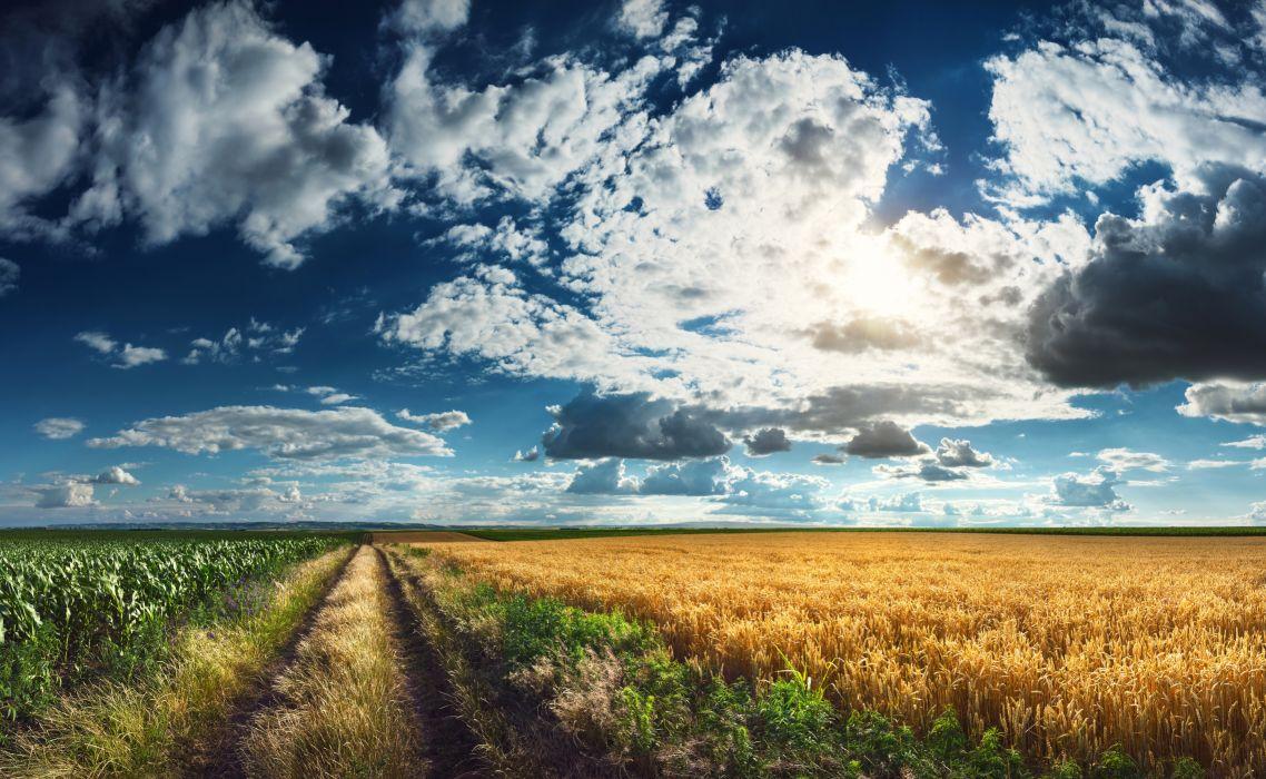 Scenery Fields Sky Roads Clouds Grass Nature wallpaper