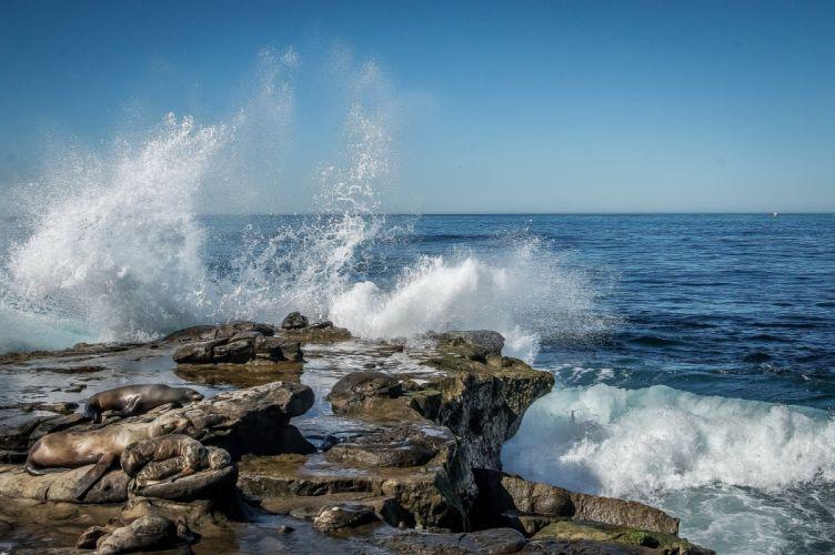 Waves Ocean USA Spray La Jolla California Nature wallpaper