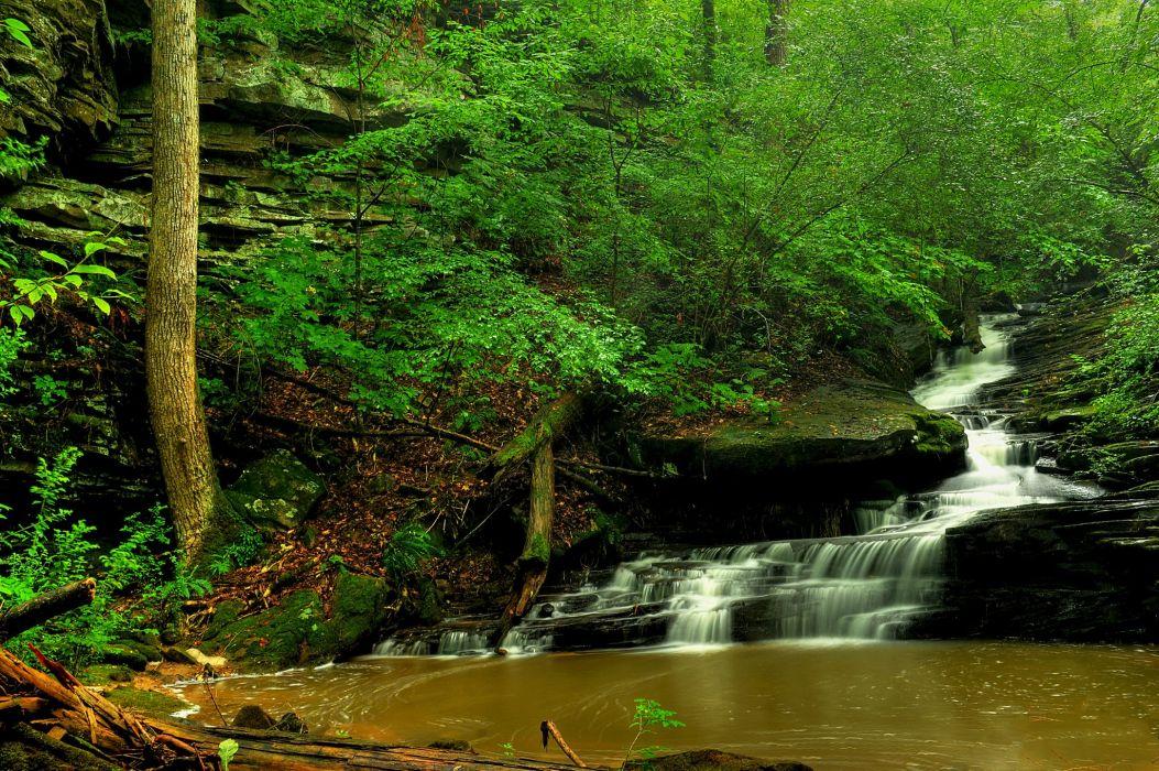 Waterfalls Stream Nature wallpaper