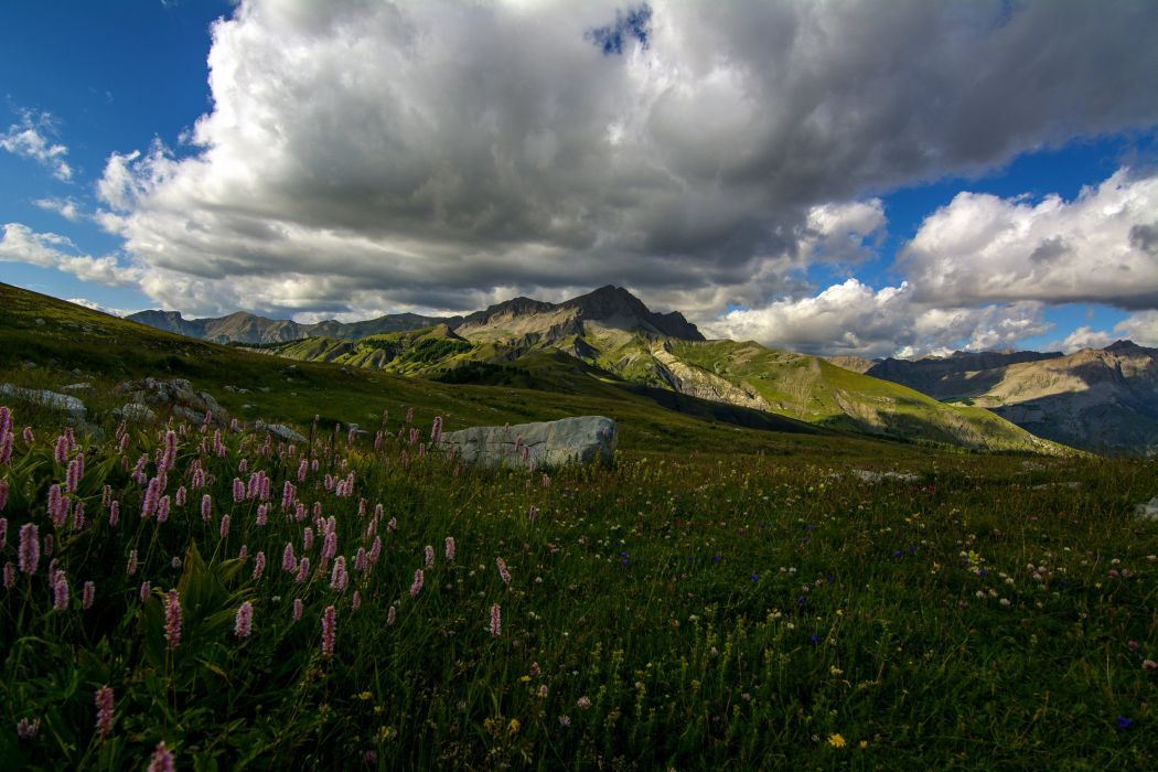 France Scenery Mountains Lupinus Grass Clouds Colmars Nature wallpaper