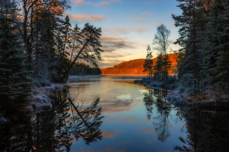 Sweden Scenery Rivers Sunrises and sunsets Trees Arvika Nature wallpaper