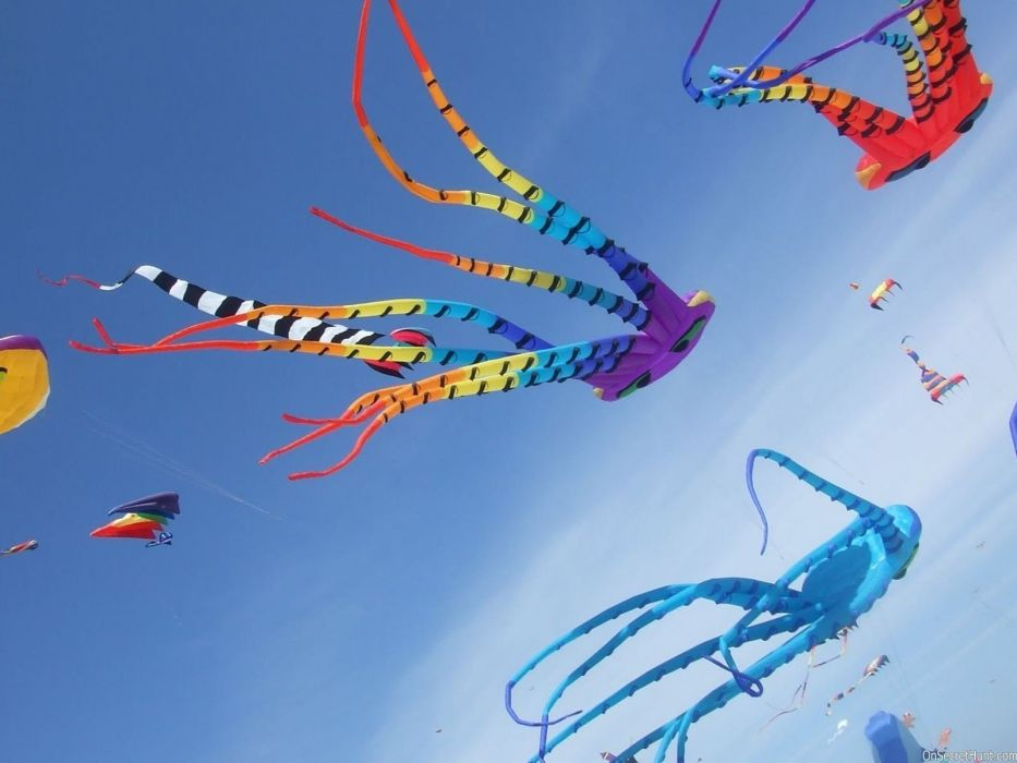 Colorful Big and Different Style Kites Fly in Sky on Uttarayan Festival wallpaper