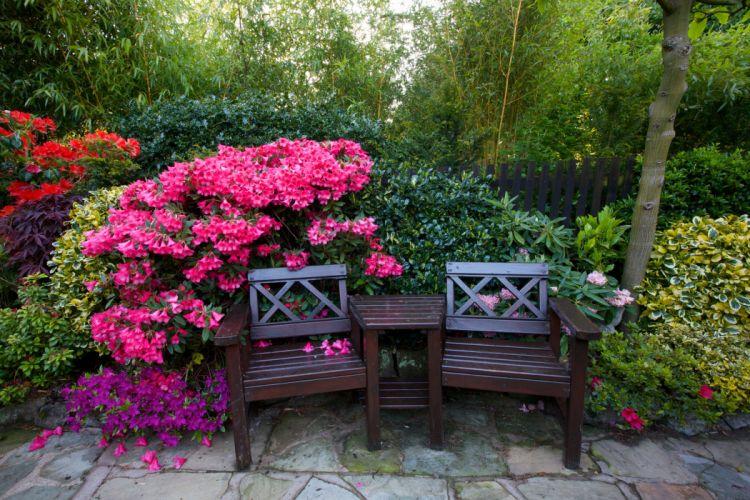 England Gardens Rhododendron Bench Shrubs Walsall Garden Nature wallpaper