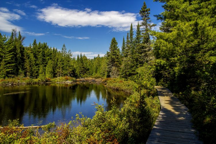 Canada Parks Lake Forests Scenery Trail Mauricie national park Quebec Nature wallpaper