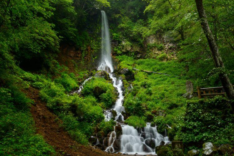 Waterfalls Grass Nature wallpaper