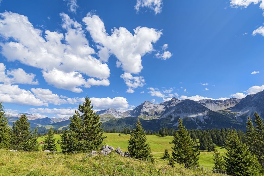 Scenery Switzerland Mountains Grasslands Sky Clouds Fir Jakobshorn Davos Nature wallpaper