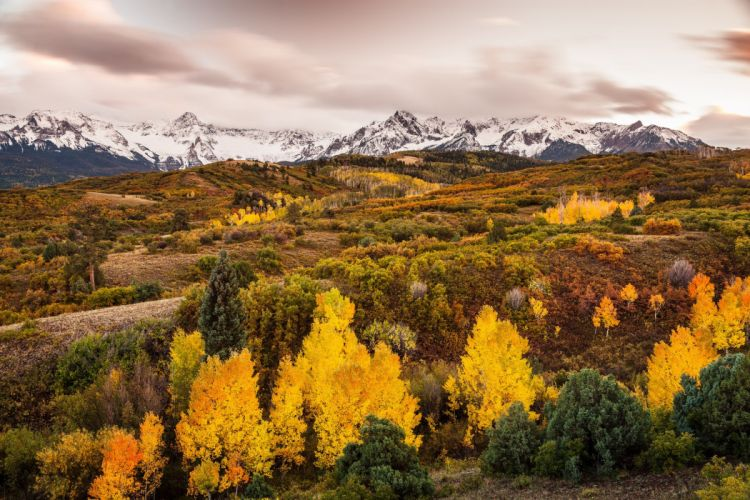 Mountains Forests Autumn Scenery Nature wallpaper