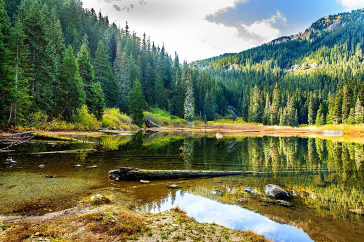 Lake Mountains Forests Scenery Nature wallpaper