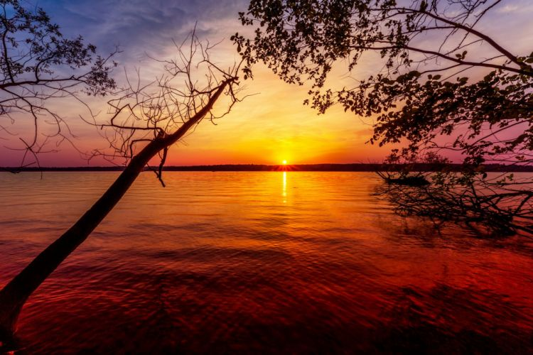 Sunrises and sunsets Lake Branches Nature wallpaper
