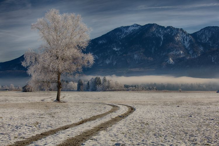 Germany Mountains Roads Bavaria Trees Snow Nature wallpaper