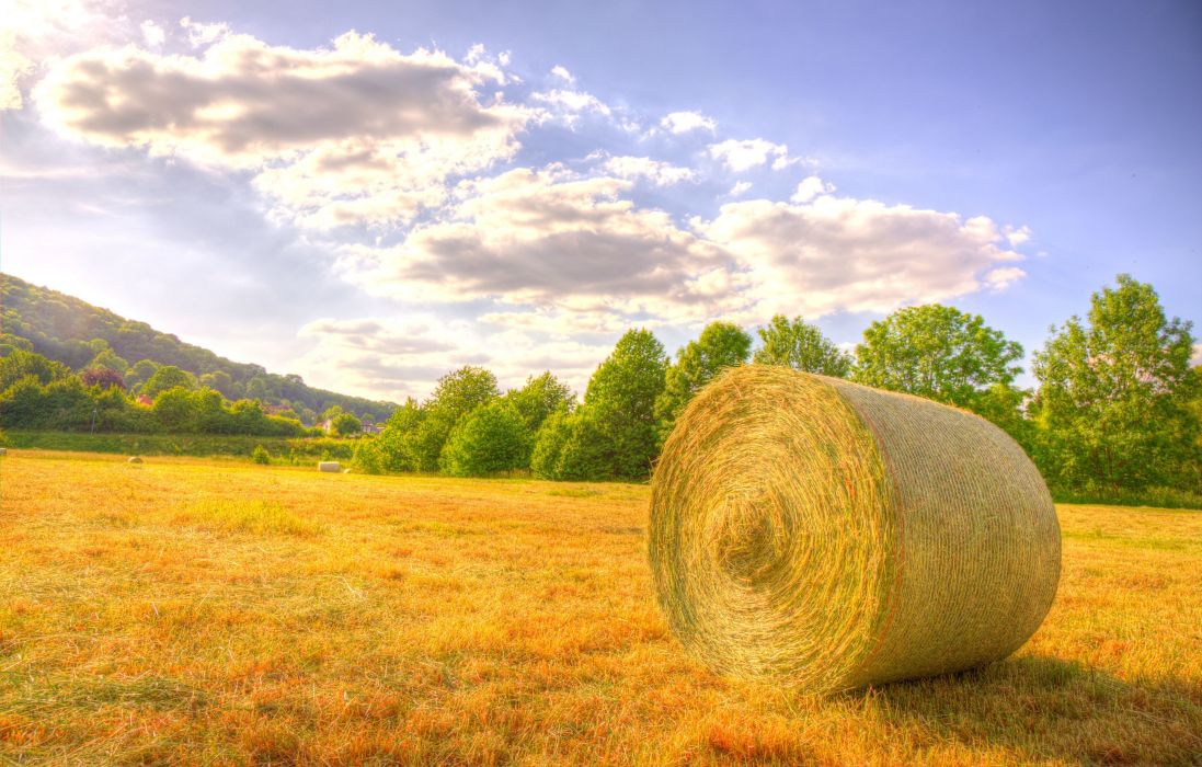 Fields Sky Hay Clouds Nature wallpaper