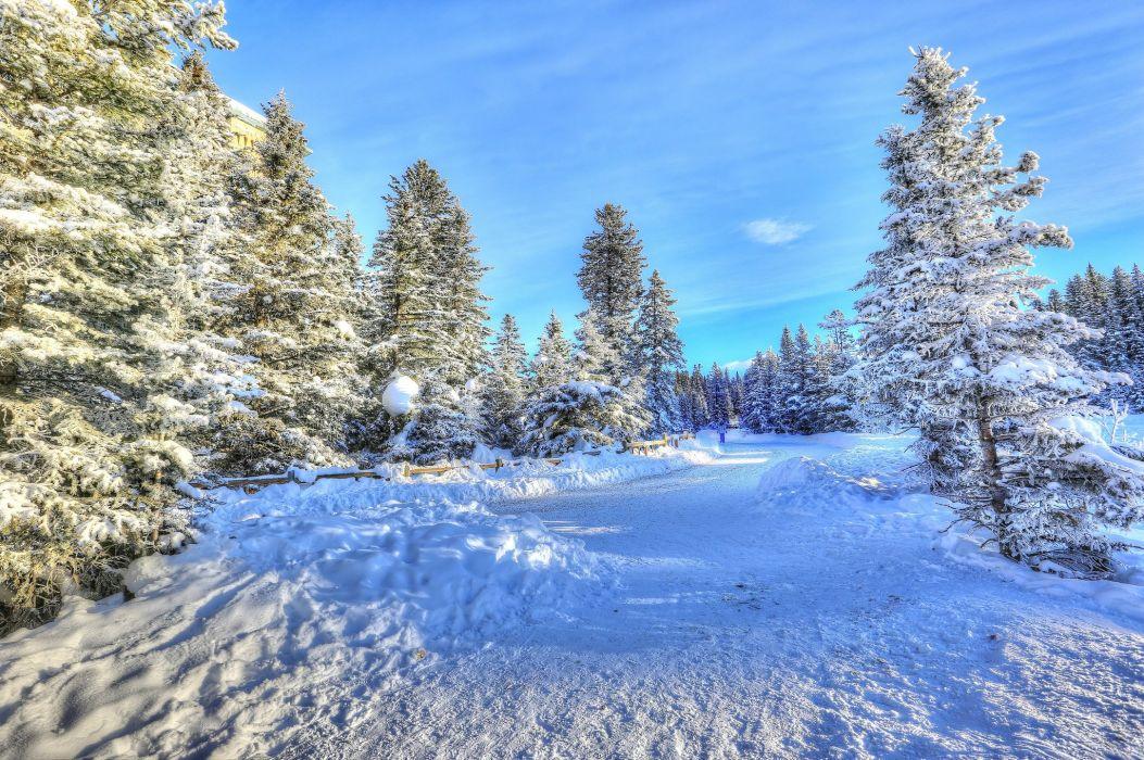 Winter Canada Rivers Snow Trees Alberta Nature wallpaper