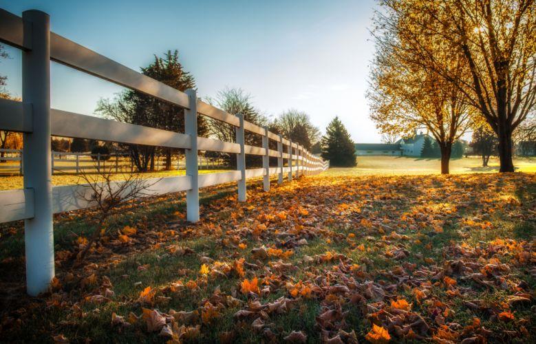 Autumn Fence Trees Grass Nature wallpaper