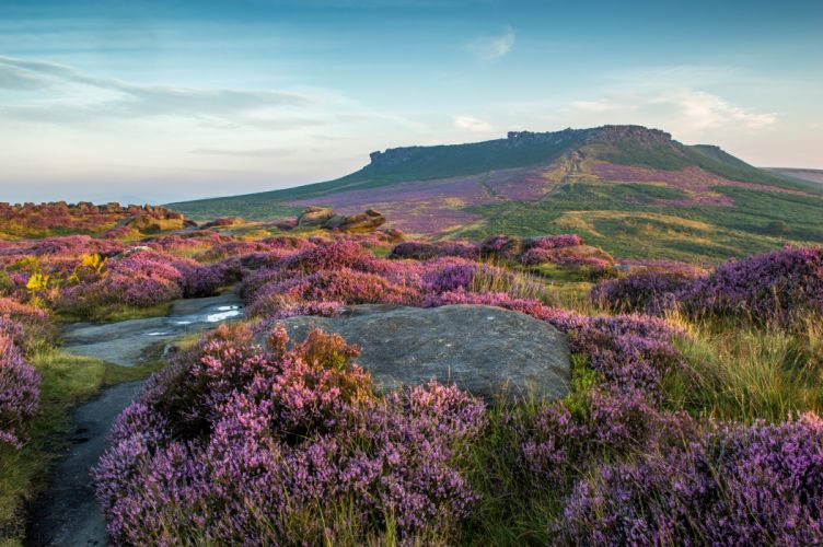 United Kingdom Parks Lavandula Grasslands Peak District National Park Nature wallpaper