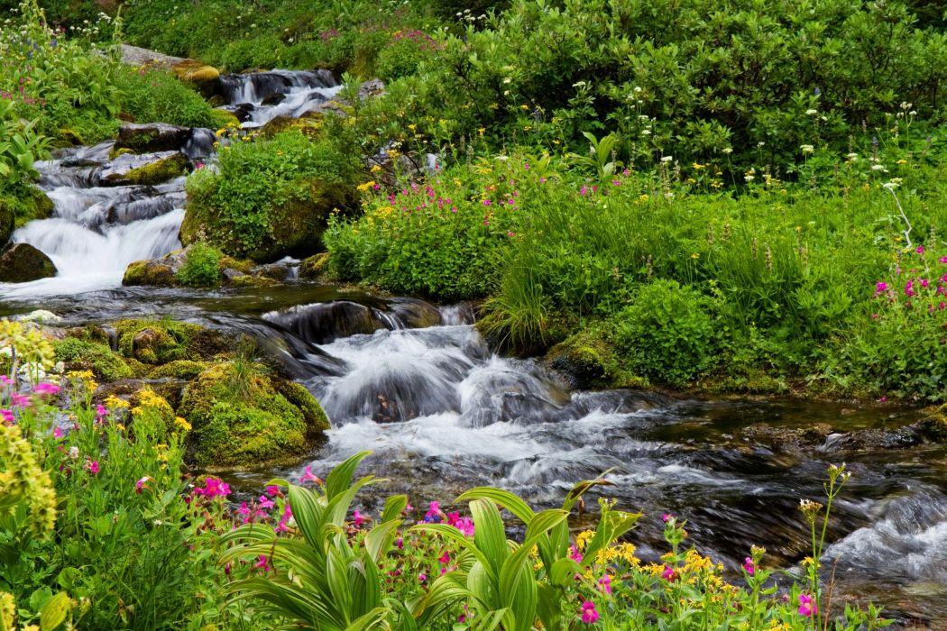 USA Parks Waterfalls Stream Mount Rainier National Park Nature wallpaper