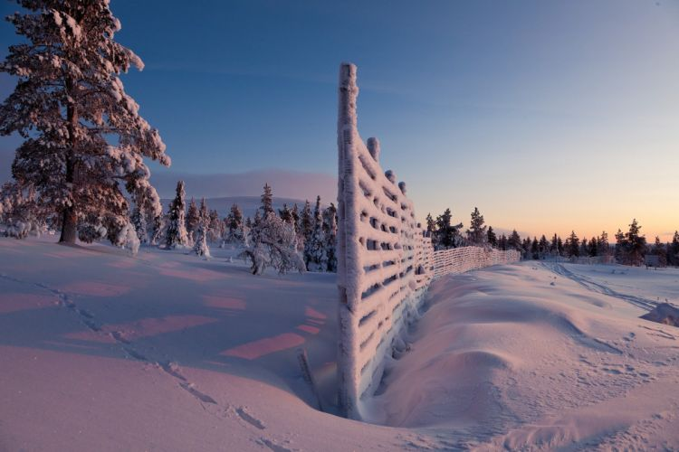 Winter Snow Fence Nature wallpaper