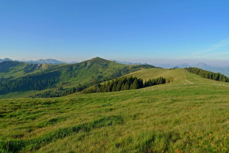 Scenery Switzerland Mountains Grasslands Cousimbert La Berra Nature wallpaper