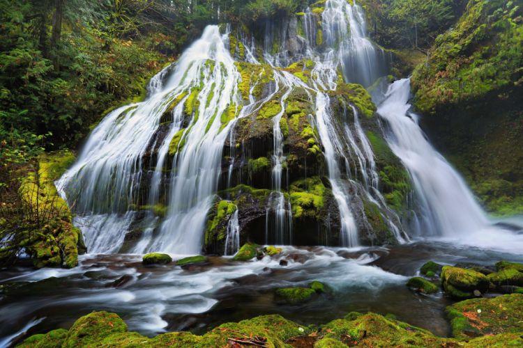 Waterfalls Moss Panther Creek Falls Columbia River Gorge Oregon Nature wallpaper