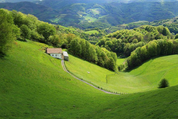 France Grasslands Forests Houses Esnazu Aquitaine Nature wallpaper