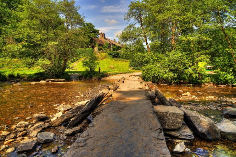 United Kingdom Parks Stones Trees Shrubs Stream Exmoor National Park Nature wallpaper