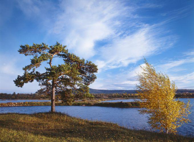 Russia Rivers Sky Trees Siberia Nature wallpaper