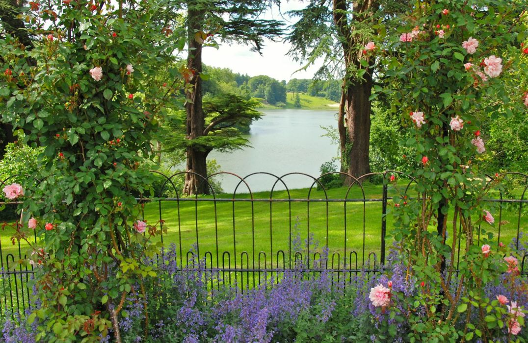 United Kingdom Parks Rivers Roses Fence Oxfordshire Gardens Nature wallpaper