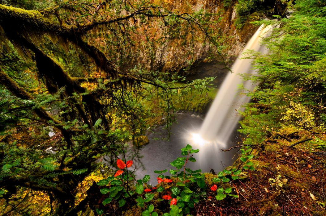 USA Waterfalls Washington Branches Nature wallpaper