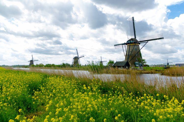 Netherlands Rivers Mill Grass Kinderdijk Nature wallpaper