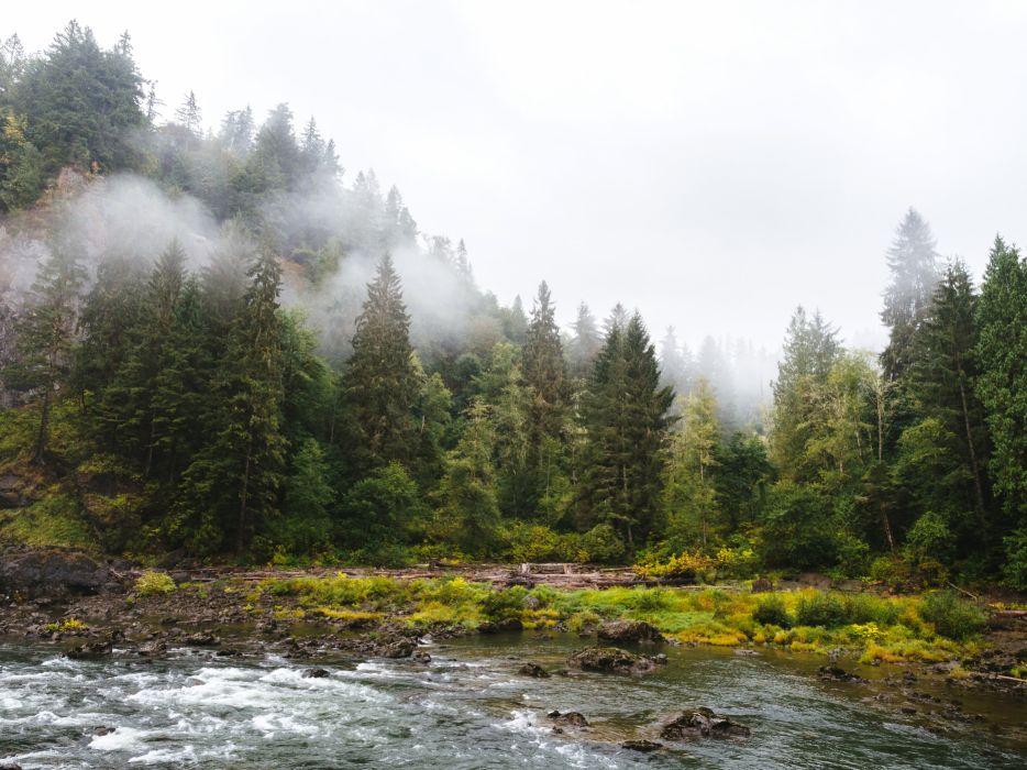 USA Forests Rivers Washington Fog Snoqualmie Falls Nature wallpaper