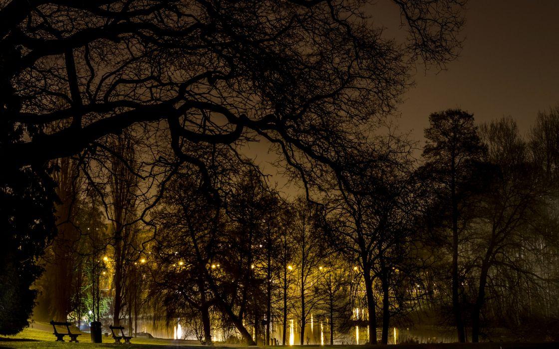 Belgium Parks Trees Night Brussels Nature wallpaper