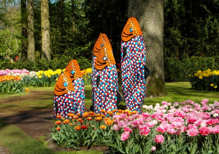 Germany Parks Tulips Fish Grugapark Essen Nature wallpaper