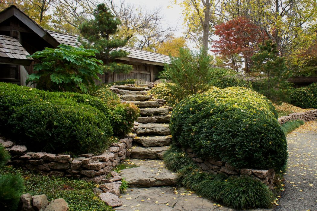 USA Stairs Shrubs Fort Worth Texas Nature wallpaper