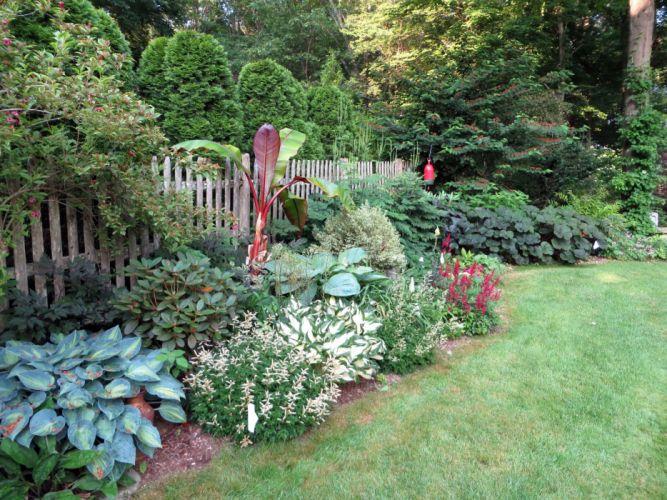 Gardens Shrubs Grass Fence Nature wallpaper