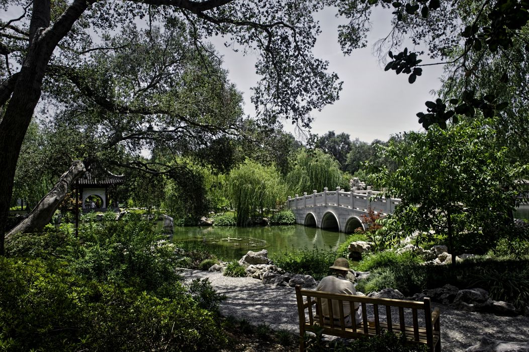USA Gardens Pond Bridges California Trees Shrubs Bench Huntington Botanical Gardens and Museum San Marino Nature wallpaper