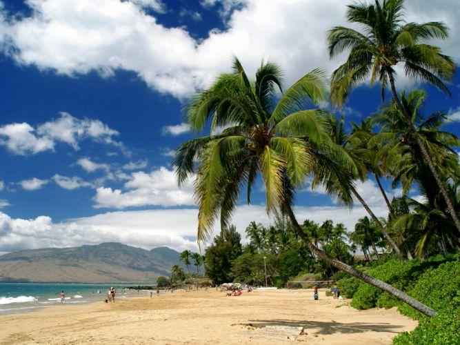 USA Tropics Coast Hawaii Palma Clouds Maui Nature wallpaper