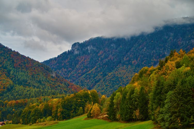 Germany Mountains Forests Autumn Trees Inzell Nature wallpaper