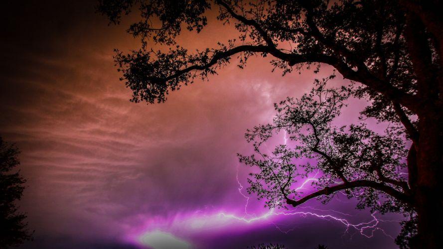 night sky clouds lightning tree wallpaper