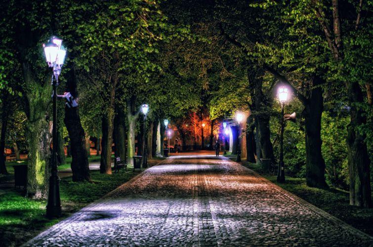 night lights lights lane alley trees wallpaper