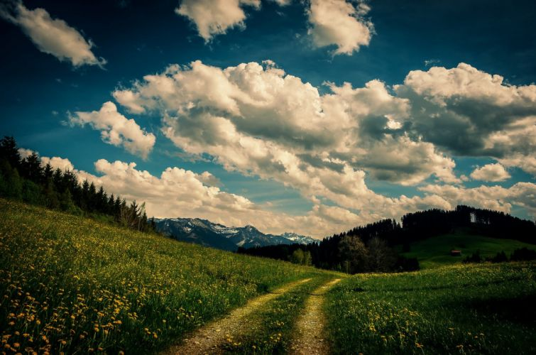 path flowers grass trees house mountains clouds sky wallpaper
