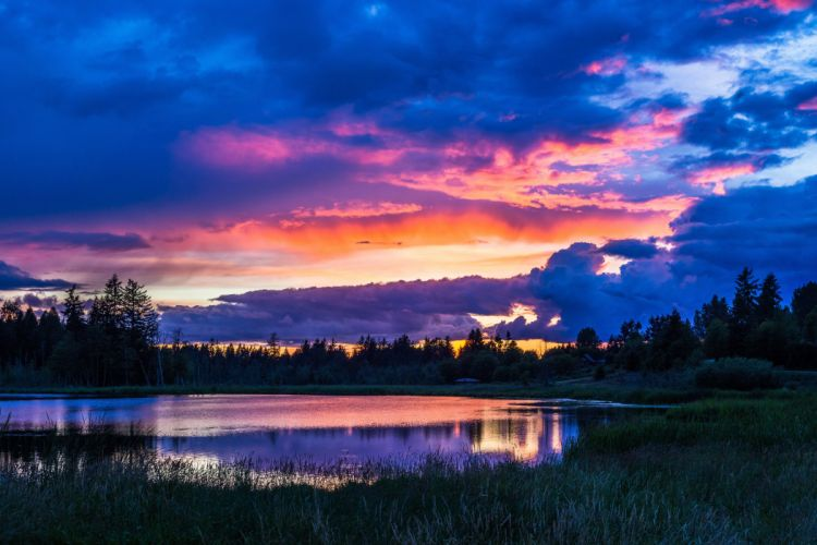 trees sky clouds forest lake water grass wallpaper