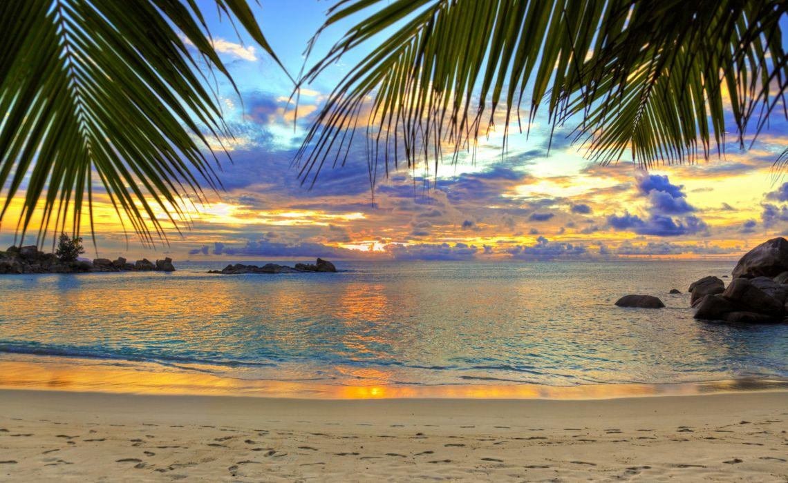 playa tropical naturaleza palmeras mas ocaso wallpaper